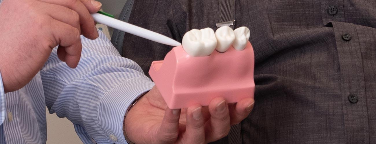 Zahntechnikermeister Chris Vörös vom Meisterlabor dent-a-pur zeigt Zahnarzt Jürgen Hellmer das Zahnersatz-Modell eines Patienten.